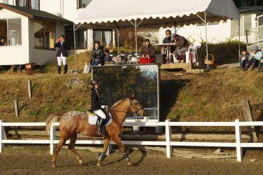 馬別選手権