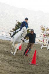 ジムカーナ スタッフは馬とだって走ります!